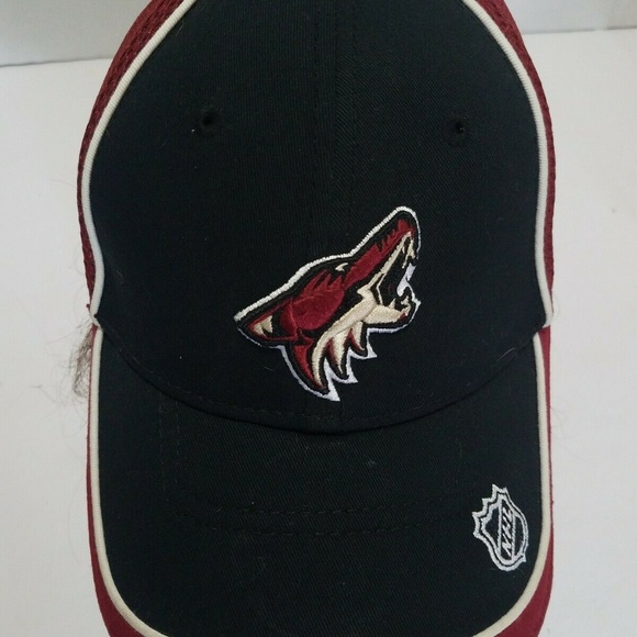 New Era Other - Phoenix Coyotes New Era Fitted Mesh Back Hat Cap N